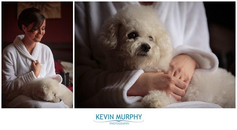 wedding dog photography