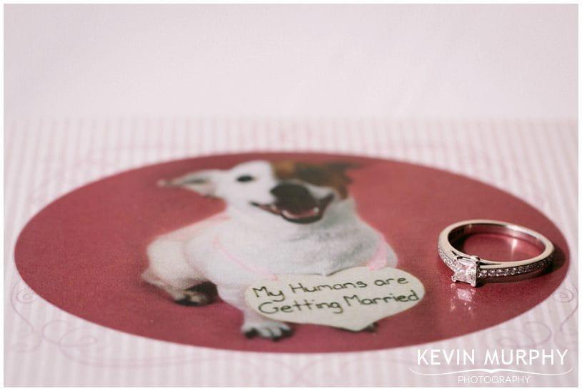 falls ennistymon wedding photographer photo (2)