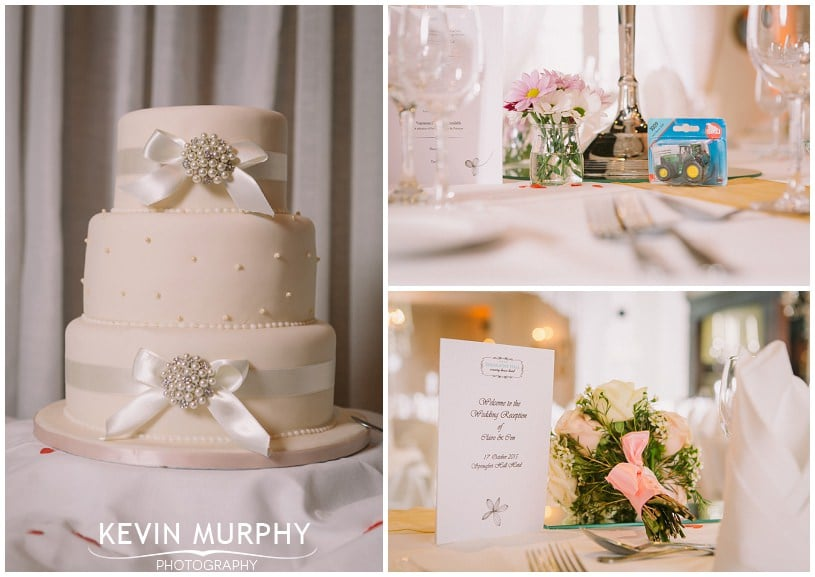 springfort hall wedding photographer photo (55)